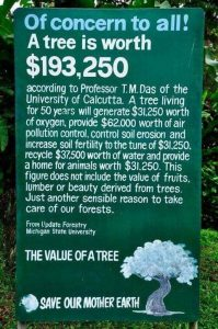 value of a tree signage
