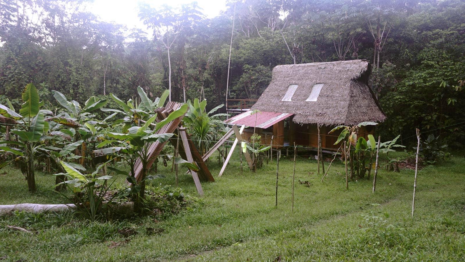 Kitchen Hillside Swale Planting Chakra Alegria De Amor