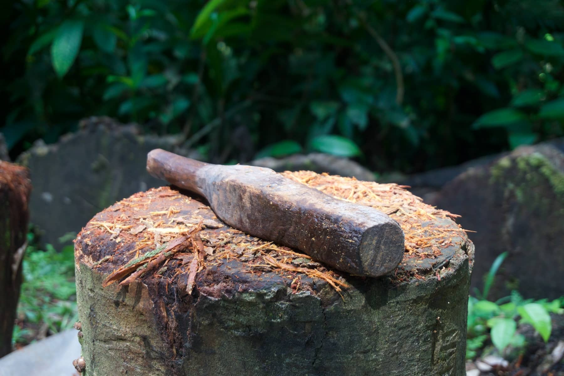 ayahuasca pounding mallet and block