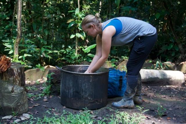 making ayahuasca medicine