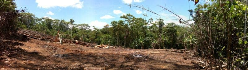 rainforest healing center new kitchen site