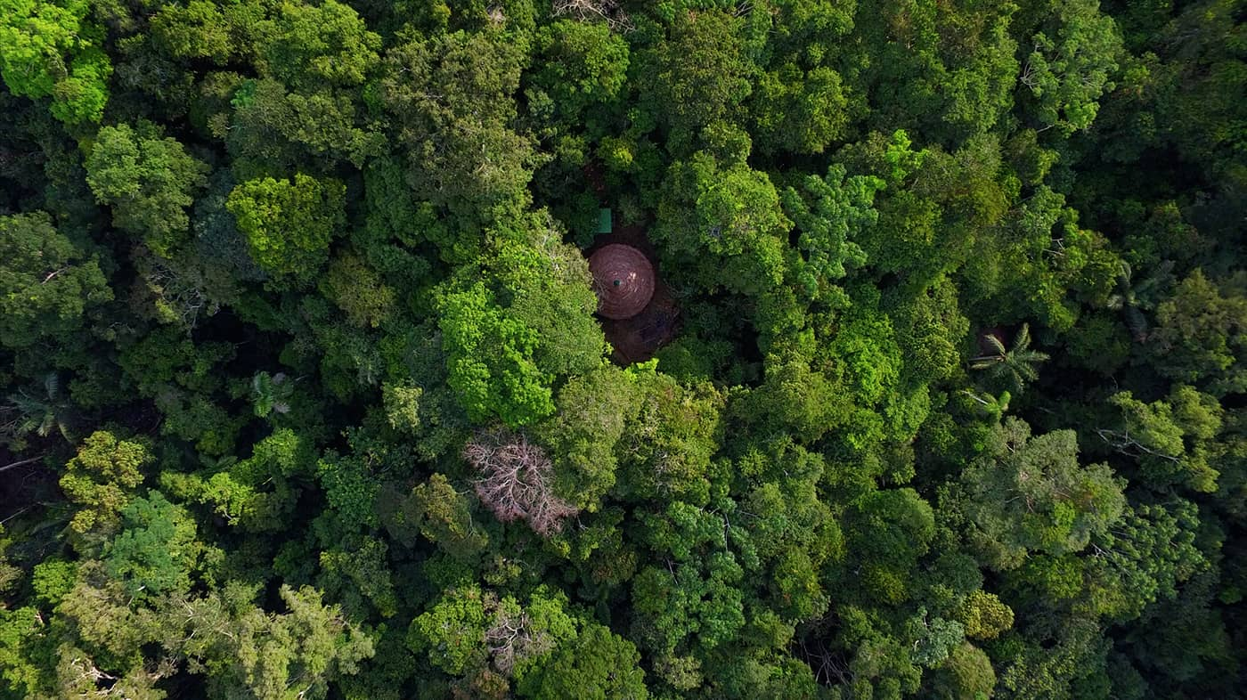 Rainforest Healing Center aerial footage maloka ceremonial structure