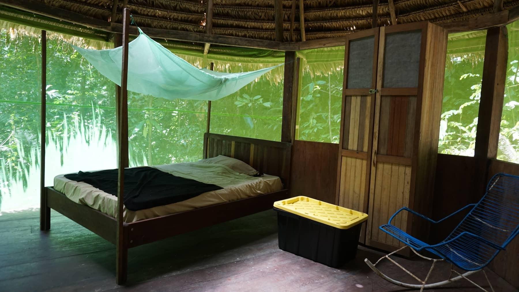 Photos of Ayahuasca Retreats at Rainforest Healing Center in